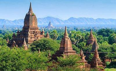 Myanmar_Seeder Reisid