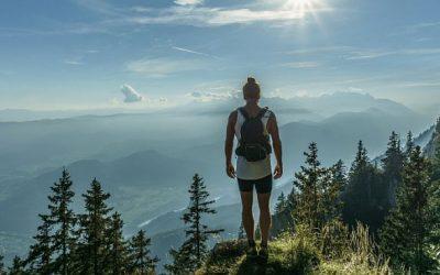 8 sammu hästiõnnestuva reisi poole…